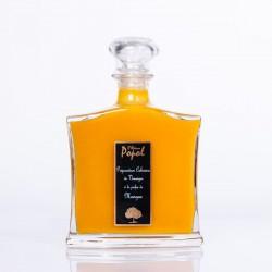 Préparation culinaire Vinaigre Carafe 700 ml Mangue