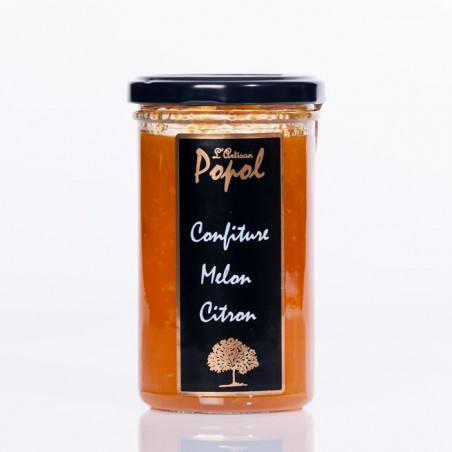 Confiture Flash 310g Melon Citron
